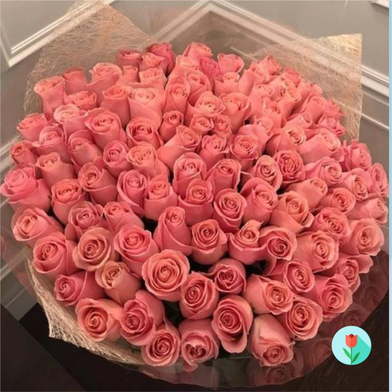 300 Rosas Rosas a domicilio