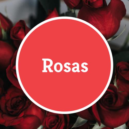 Ramos de Rosas a Domicilio
