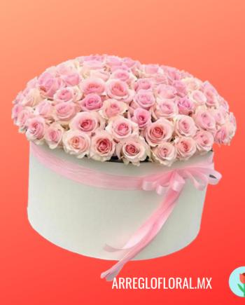Caja con 150 rosas rosas