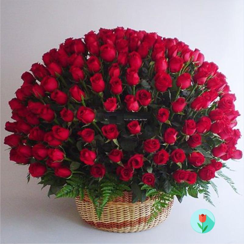 arreglo-200-rosas-rojas