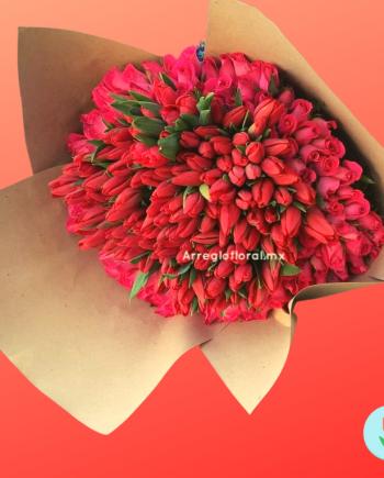 Ramo gigante de tulipanes y rosas